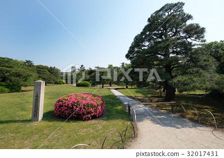 二条城 园林绿化 日本园林 32017431