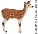 插圖 動物 哺乳動物 32018078