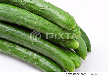 cucumber 32029069