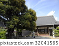 aichi prefecture, kariycity, old tree 32041595