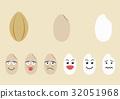 水稻 稻米 米 32051968