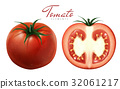 red tomatoes illustration 32061217