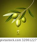olive fruits illustration 32061227