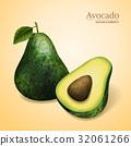 green avocado illustration 32061266