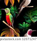 새, 조류, 배경 32071247