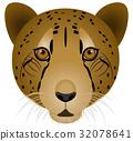 เสือชีต้า 32078641