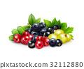 水果 醋栗 漿果 32112880