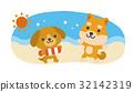 海水浴 犬 32142319