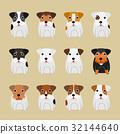 animal, animals, pet 32144640