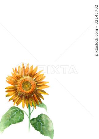 夏季贺卡 夏末的贺卡 明信片 32145762