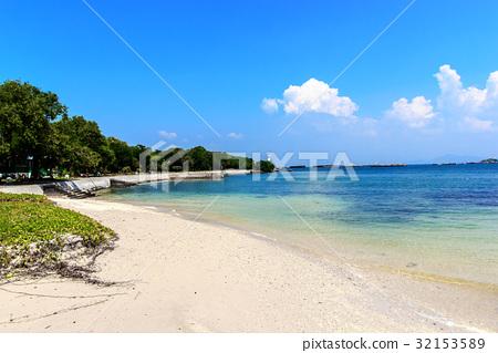 The sea and beach 32153589