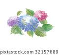 繡球花 花朵 花 32157689