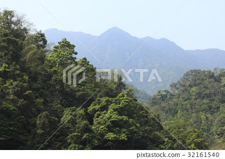 Landscape 32161540