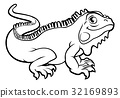 iguana, cartoon, vector 32169893
