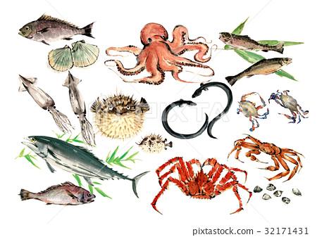 鱼 海鲜 海洋 32171431