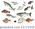 fish, fishes, fish and shellfish 32171432