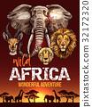 animal, Africa, safari 32172320