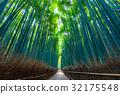 Bamboo grove in Sagano, Kyoto 32175548