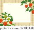 藤蓆 茶蔗子屬 鵝莓 32183438