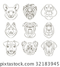 Vector illustration of different dogs breed 32183945