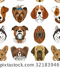 Vector illustration of different dogs breed 32183946