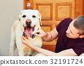 Fashion for dog 32191724