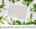 frame,paper,leaves 32193030