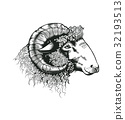 Head of ram hand drawn in antique etching style 32193513