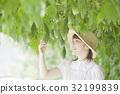 苦瓜 農民 農夫 32199839
