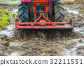 paddy, people, tractor 32211551