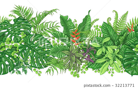 Tropical Plants Line Horizontal Pattern 32213771
