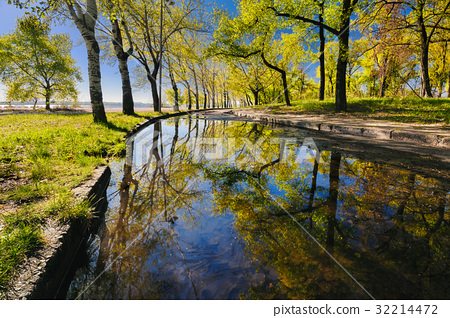 Beautiful reflection of trees in a puddle 32214472