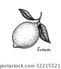fruit, illustration, lemon 32215521