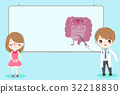 advert anatomy health 32218830