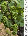 Saale Unstrut Grauer Burgunder 32232852