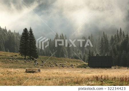 Huts in the valley of the Tatra Mountains 32234423
