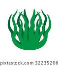 green algae isolated illustration 32235206