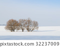field and trees in the snow 32237009