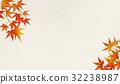 잎, 가을, 잎사귀 32238987