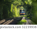 train running through natural tunnel tree 32239936