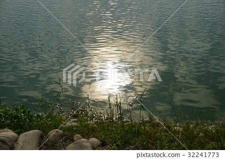 Sun in the lake 32241773