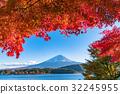 富士山 枫树 枫叶 32245955
