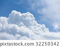 雲蓋 32250342