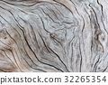 Old wood texture 32265354
