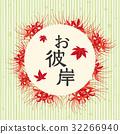 彼岸花 石蒜 曼珠沙華 32266940