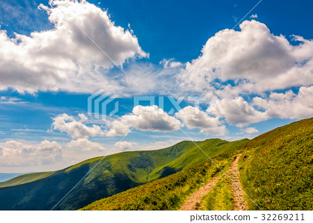 beautiful summer landscape in mountains 32269211