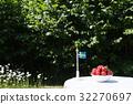 strawberries, sweden, flag 32270697
