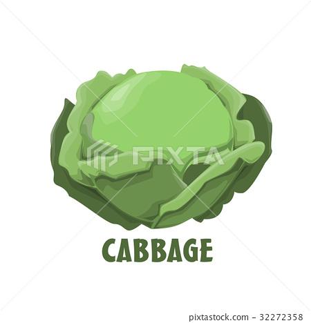 Logo Cabbage vector farm design 32272358