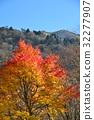 ต้นเมเปิล,ฤดูใบไม้ร่วง,ทัศนียภาพ 32277907