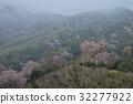 หมอก,ดอกซากุระบาน,ซากุระบาน 32277922